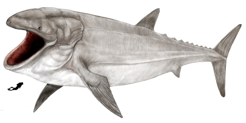 Illustration of Leedsichthys Problematicus [Relevant size against a human being