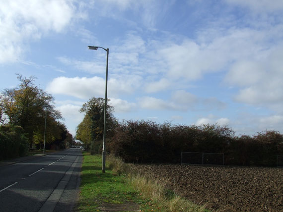 thorneyrd-today